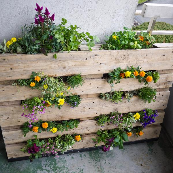 Grandes jardines en espacios peque os sidney integral inmobiliaria - Macetas en la pared ...